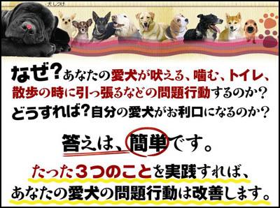 犬しつけ ドッグトレーナー藤井聡が教える犬のしつけ教室 愛犬 吠える 来客 インターホン