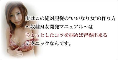 ★絶対服従の『いいなり女』の作り方 奴隷M女開発マニュアル[TEAM-S.I.H] 篠田信行 簡単 縛り方 SM 陵辱