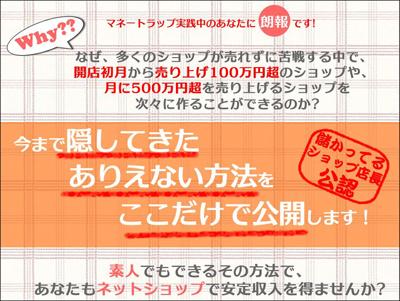 【MSM】マネートラップ・サクセス・メソッド 小玉歩 口コミ 評判 ネットショップ 運営